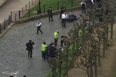 Foreign ministry condemns 'heinous' terrorist attack outside British Parliament